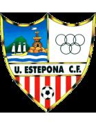 Unión Viera shield