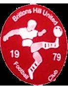 Brittons Hill shield