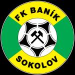 Baník Sokolov shield