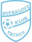 Tachov shield