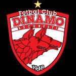 Dinamo Bucureşti shield