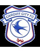 Cardiff MU shield