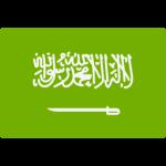 Saudi Arabia shield
