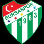 Bursaspor shield