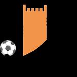 Ajman shield