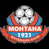 Montana shield