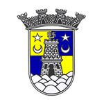 Sintrense shield