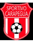 Deportivo Caaguazú shield