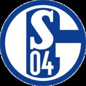 Schalke 04 U19 shield