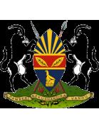 Harare City shield