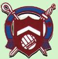Mangotsfield United shield