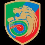 Miedź Legnica shield