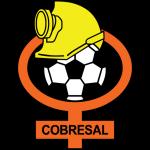 Cobresal shield