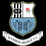 Bamber Bridge shield