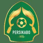 PS TNI shield