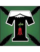 Deportes Temuco shield