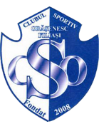 Filiaşi shield