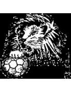 Zwarte Leeuw shield
