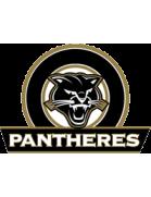 Panthères shield