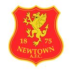 Newtown shield