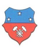 Flavion Sport shield