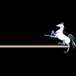 Marconi Stallions shield
