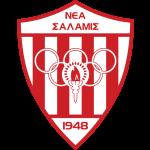 Dravograd shield