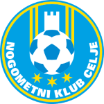 Celje shield