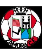 Zamora shield