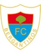 Bergantiños shield