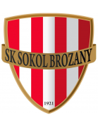 Sokol Brozany shield