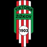 Viktoria Žižkov shield