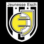Jeunesse d'Esch shield