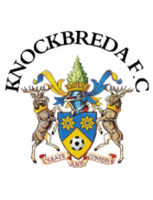 Knockbreda shield