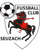 Seuzach shield