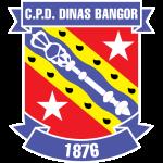 Bangor City shield