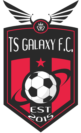 TS Galaxy Team Logo