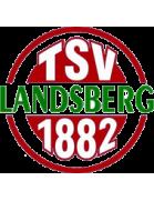 Landsberg shield