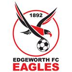 Edgeworth Eagles shield