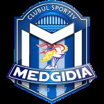Medgidia shield