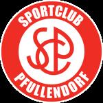 Pfullendorf shield
