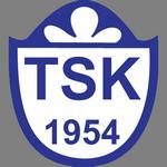 Tuzlaspor shield