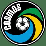 NY Cosmos shield