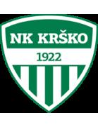 Krško shield