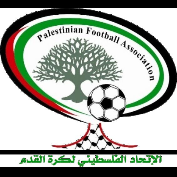 Palestine shield