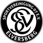Elversberg shield