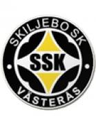 Skiljebo shield