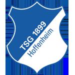 Hoffenheim shield