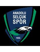 Anadolu Selçukspor shield