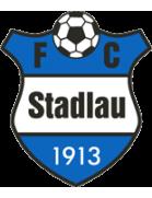 Stadlau shield